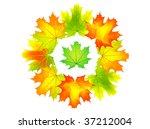 autumn color lears as circle.