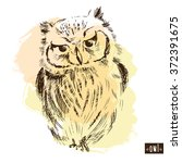 owl hand drawn  black and white ...   Shutterstock .eps vector #372391675
