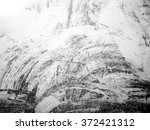 black and white paint textured... | Shutterstock . vector #372421312