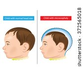 illustration of a newborn baby... | Shutterstock .eps vector #372565018