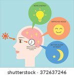 exposure to sunlight regulate...   Shutterstock .eps vector #372637246