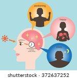 exposure to sunlight regulate... | Shutterstock .eps vector #372637252