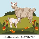 vector image of a goat and her... | Shutterstock .eps vector #372687262