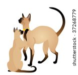 beautiful siamese cats | Shutterstock . vector #37268779