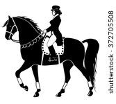 horseback riding and dressage | Shutterstock .eps vector #372705508