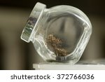 extreme close up of glass jar... | Shutterstock . vector #372766036