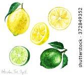 Watercolor Food Clipart   Lemon ...
