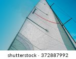 white sail on the background of