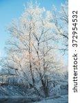 snow   Shutterstock . vector #372954532