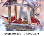 Rustic Style Birds Feeder