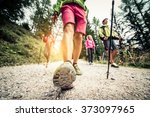 group of hikers with backpacks... | Shutterstock . vector #373097965