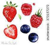 watercolor food clipart  ... | Shutterstock . vector #373157272