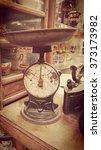 scales in | Shutterstock . vector #373173982