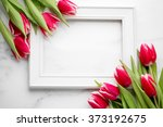 Tulip With Blank Picture Frame...