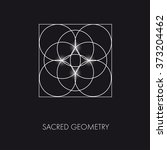 sacred geometry. stained glass. ... | Shutterstock .eps vector #373204462