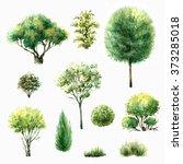 hand drawn watercolor... | Shutterstock . vector #373285018