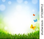 easter poster with grass border ... | Shutterstock .eps vector #373288912