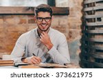 working with pleasure. handsome ... | Shutterstock . vector #373621975