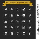 25 premium quality icon set.... | Shutterstock .eps vector #373629712