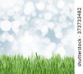 green grass background | Shutterstock . vector #373733482