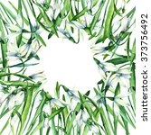 Snowdrop Card For You ...