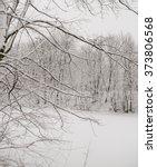 snow big branch | Shutterstock . vector #373806568