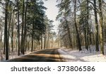 snow road in the forest | Shutterstock . vector #373806586