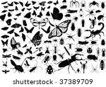 100 vector silhouettes of...