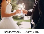 gorgeous wedding couple enjoys... | Shutterstock . vector #373949482