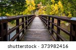 autumn hike in michigan on the... | Shutterstock . vector #373982416