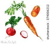 watercolor food clipart  ... | Shutterstock . vector #374006212
