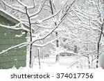 Snow Covered Tree And Branches...