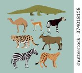 Vector Set Of Different Africa...