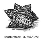 vintage cocoa bean and pod... | Shutterstock .eps vector #374064292