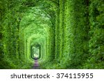wonder of nature   real tunnel... | Shutterstock . vector #374115955