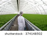 junior agricultural scientists... | Shutterstock . vector #374148502