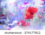 Field Of Bright Red  Poppy...