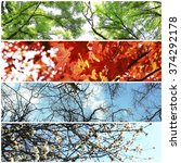 four seasons collage  several... | Shutterstock . vector #374292178