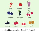 hand draw berries clip art.... | Shutterstock .eps vector #374318578