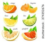 fresh citrus fruits. vector... | Shutterstock .eps vector #374352676