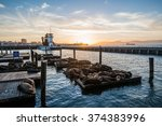 seal  sea lions  at the pier 39 ... | Shutterstock . vector #374383996