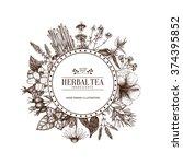 vintage card design with herbal ... | Shutterstock .eps vector #374395852