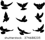 dove  flying dove black and...   Shutterstock .eps vector #374688235