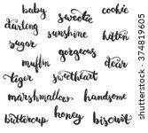 set of brushpen lettering and... | Shutterstock . vector #374819605
