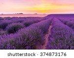 Beautiful Landscape Of Lavende...