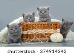 Stock photo british kitten with a ball of wool in basket 374914342