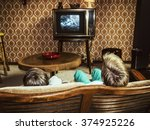 two boys watching television at ... | Shutterstock . vector #374925226