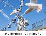 the beauty of paris | Shutterstock . vector #374925346