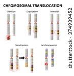 mutation. chromosome... | Shutterstock .eps vector #374939452