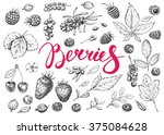 food hand drawn vector elements.... | Shutterstock .eps vector #375084628